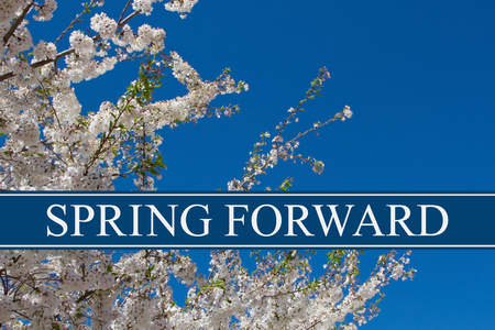 A tree in full bloom with blue sky and text Spring Forward Stok Fotoğraf