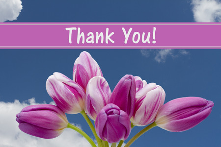 grateful: Thank You Message, Some tulips with blue sky and text Thank You
