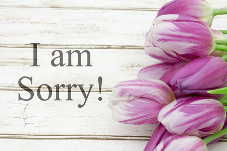 i am sorry: I am Sorry, Some tulips with weathered wood and text I am Sorry