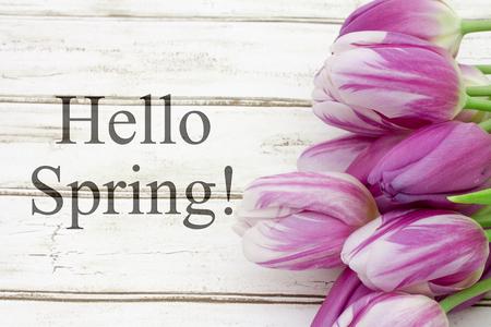 こんにちは春グリーティング、風化した木の背景とテキストこんにちは春といくつかのチューリップ