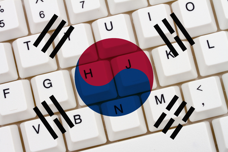 access restricted: Restricted Internet access in South Korea, The South Korean flag on a computer keyboard