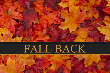 back in time: Fall Back Time Change Message, Fall Leaves Background and text Fall Back