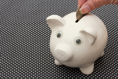 add: Added to your Saving, A white piggy bank black and white background