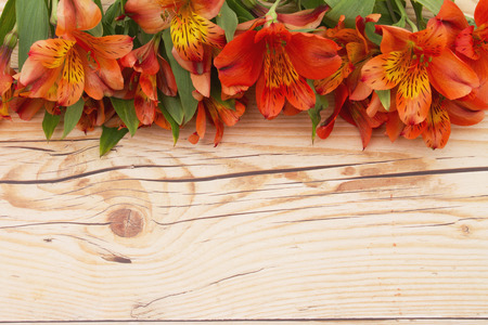 orange lily: Flower springtime background, Some lilies on weathered wood copy space for your message