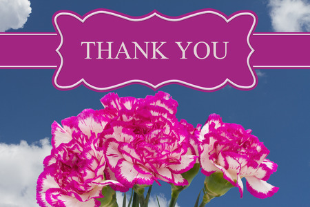 floral objects: Thank You message with a Pink and White Peony Bouquet with a sky background Stock Photo
