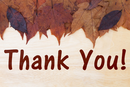 caes: fall leaves on weathered wood with text Thank You Foto de archivo