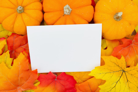 Some fall leaves and pumpkins with a blank greeting card for message