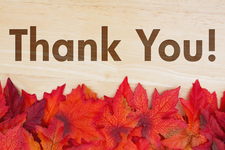 caes: Some fall leaves on weathered wood with text Thank You