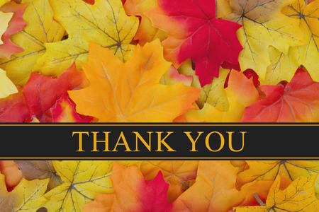 Some fall leaves with text Thank You Imagens