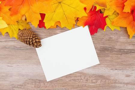 fall leaf: Some fall leaves on weathered wood with a blank greeting card for message
