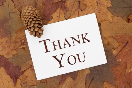 caes: Algunas hojas de otoño, cono de pino y una tarjeta de felicitación con el texto le agradecen