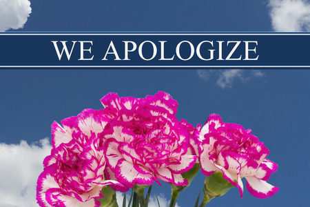 apologize: We Apologize message with a Pink and White Peony Bouquet with a sky background