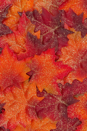 Glitter Orange and Red Autumn Leaves Background
