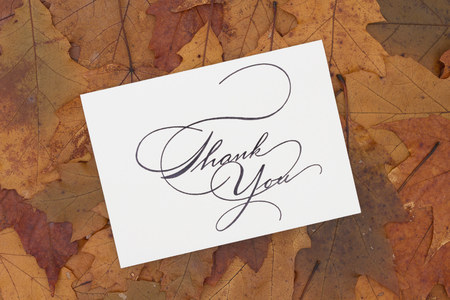 caes: Some fall leaves with text Thank You on a greeting card