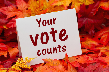Some fall leaves with a greeting card with text Your Vote Counts
