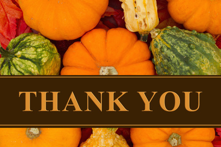 caes: Some fall leaves and pumpkins and gourds with text Thank You