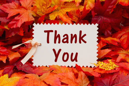 caes: Some fall leaves with a gift tag with text Thank You