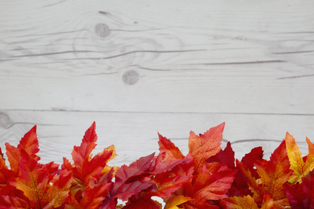 distressed background: Some fall leaves on weathered wood with copy space for message