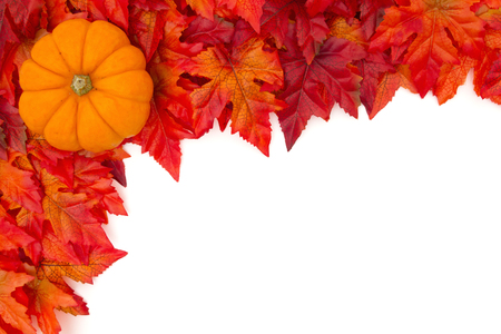Autumn Leaves Background with a pumpkin over white with copy space for message