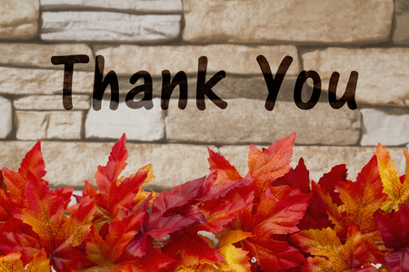 caes: Some fall leaves on weathered bricks with text Thank You