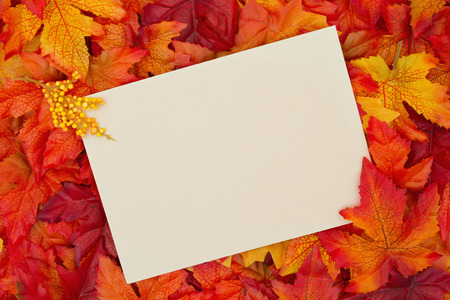 Some fall leaves with a blank beige greeting card with copy-space for message