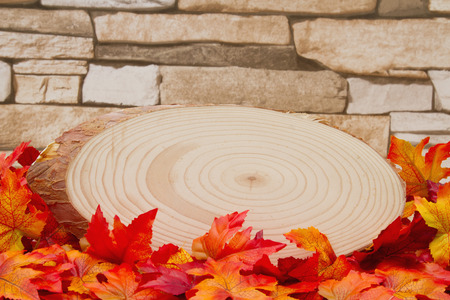 wood plaque: Some fall leaves with cut wood plaque on weathered brick with copy space for message Stock Photo