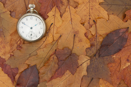 copyspace: Some fall leaves and retro pocket watch with copy-space