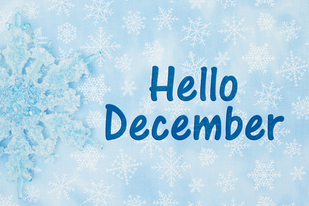 noone: A Snowflake with a blue and white snowflakes background with text Hello December