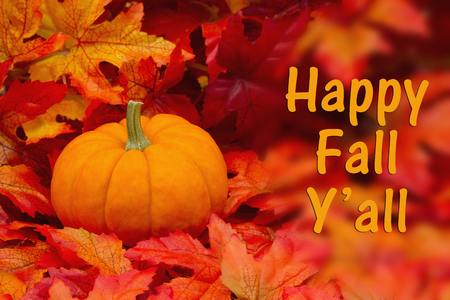 Happy Fall Yall Greeting , Some fall leaves and a pumpkin with text Happy Fall Yall Stock Photo