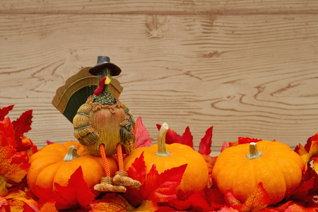 space wood: Some fall leaves with pumpkins and a turkey on weathered wood with copy space for message Stock Photo
