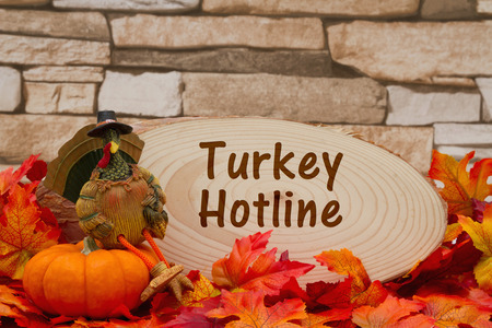 wood plaque: Some fall leaves, turkey on a pumpkin and wood plaque on weathered brick with text Turkey Hotline Stock Photo