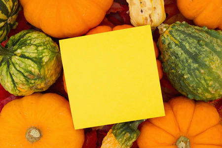 Some fall leaves and pumpkins and gourds with a yellow sticky note for copy space for message