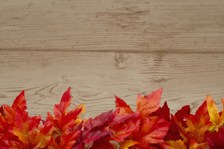 space wood: Some fall leaves on weathered wood with copy space for message