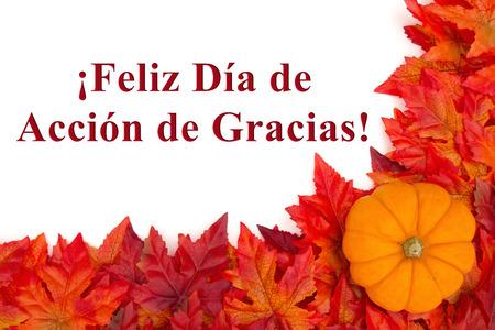 Some fall leaves and a pumpkin with text Feliz Dia de Accion de Gracias