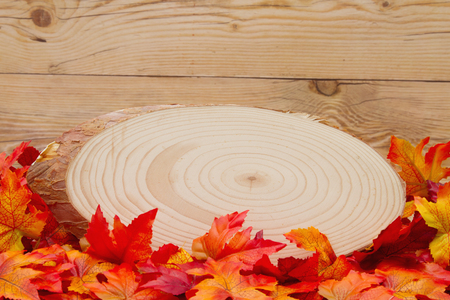 space wood: Some fall leaves with cut wood plaque on weathered wood with copy space for message
