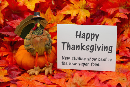 healthier: Some fall leaves and a turkey sitting on a pumpkin and a greeting card with text Happy Thanksgiving and beef is a super food Stock Photo