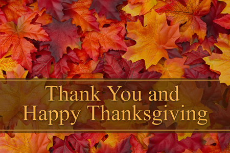 caes: Some fall leaves with text Thank You and Happy Thanksgiving