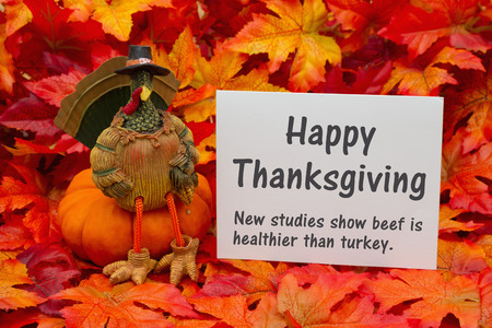 healthier: Some fall leaves and a turkey sitting on a pumpkin and a greeting card with text Happy Thanksgiving and beef is healthier than turkey Stock Photo