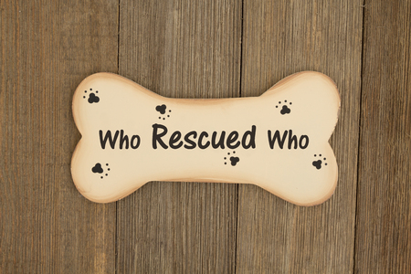 weathered: Rescuing a dog, A wood dog bone on a weathered wood background with text who rescued who