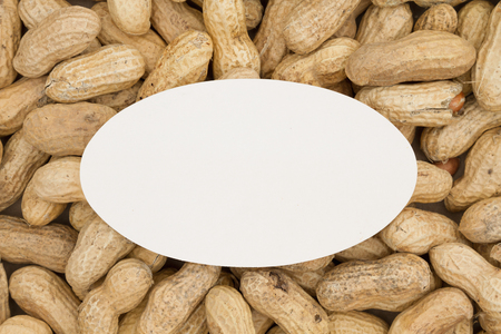 blank spaces: Raw peanuts in shells background with a white oval card for your message