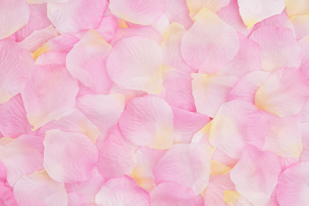 Love background with a pink and yellow rose flower petals with muted mix of shades to provide copy-space for your message