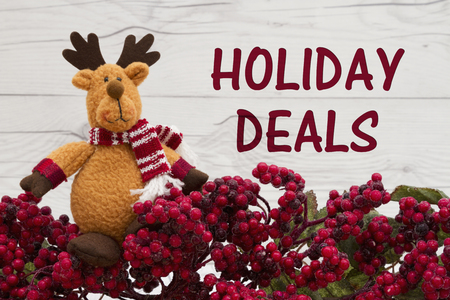 Old fashion Christmas store message, Frost covered red holly berries with a reindeer on weathered wood background with text Holiday Deals 写真素材