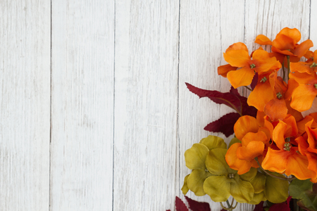 Orange and red fall flowers on weathered whitewash textured wood background with copy space for your fall or autumn message Stockfoto