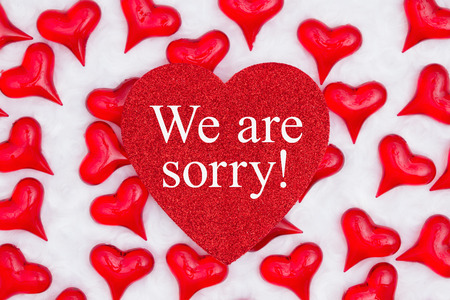 We are sorry message on glitter heart with red hearts on white plush textured fabric Reklamní fotografie