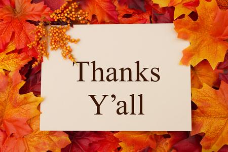 Biglietto di auguri di ringraziamento, alcune foglie autunnali e un biglietto di auguri con testo Grazie Y'all Archivio Fotografico