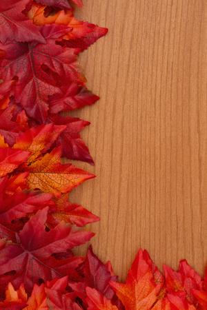 Autumn  with red and orange fall leaves on wood with copy space for your message