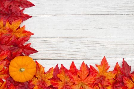 Red and orange fall leaves and pumpkin on weathered whitewash wood textured background with copy space for your message