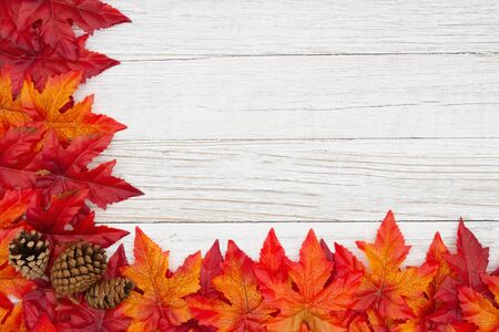 Red and orange fall leaves and pine cones on weathered whitewash wood textured background with copy space for your message