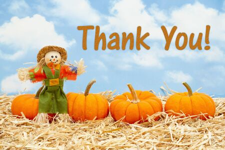 Thank You message with scarecrow and orange pumpkins on straw hay with sky