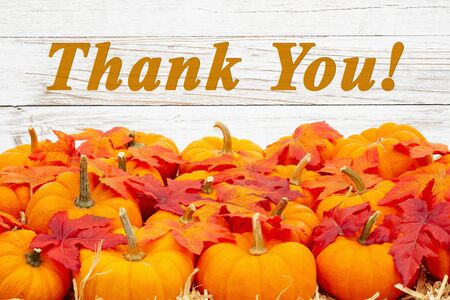 Thank you message with orange pumpkins with fall leaves on straw hay with weathered whitewash wood